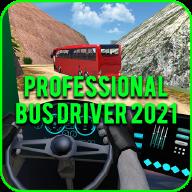 专业巴士司机